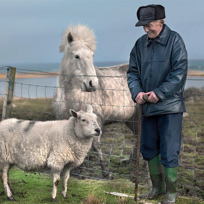 Outer Hebrides - Horse / Sheep
