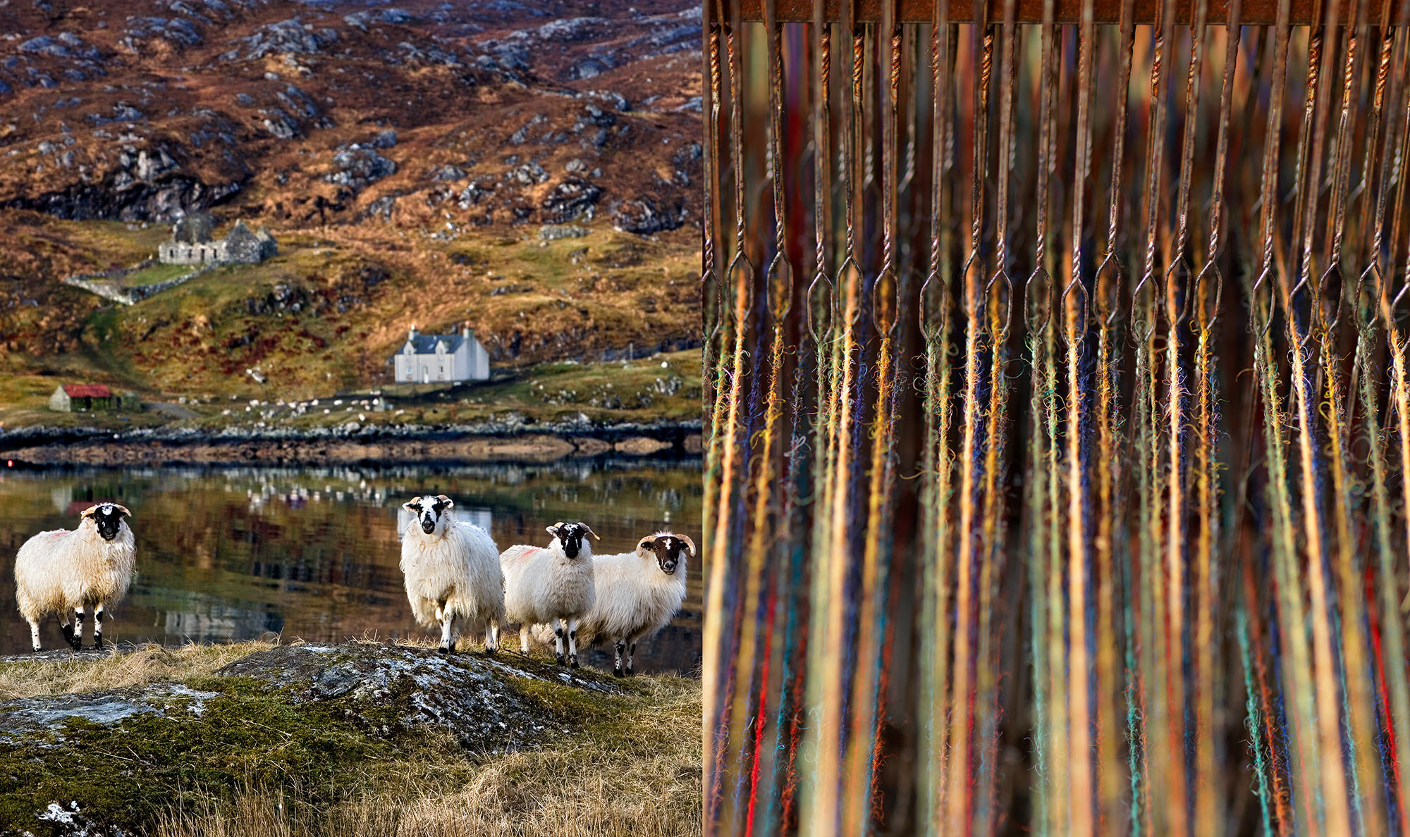 Harris Tweed Landscape Photography