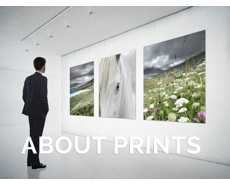 About Prints